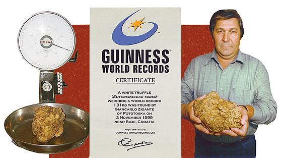 The largest white truffle
